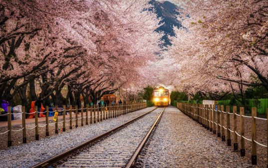 beautiful-tram-station-in-south-korea